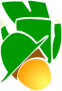 saf_logo_v